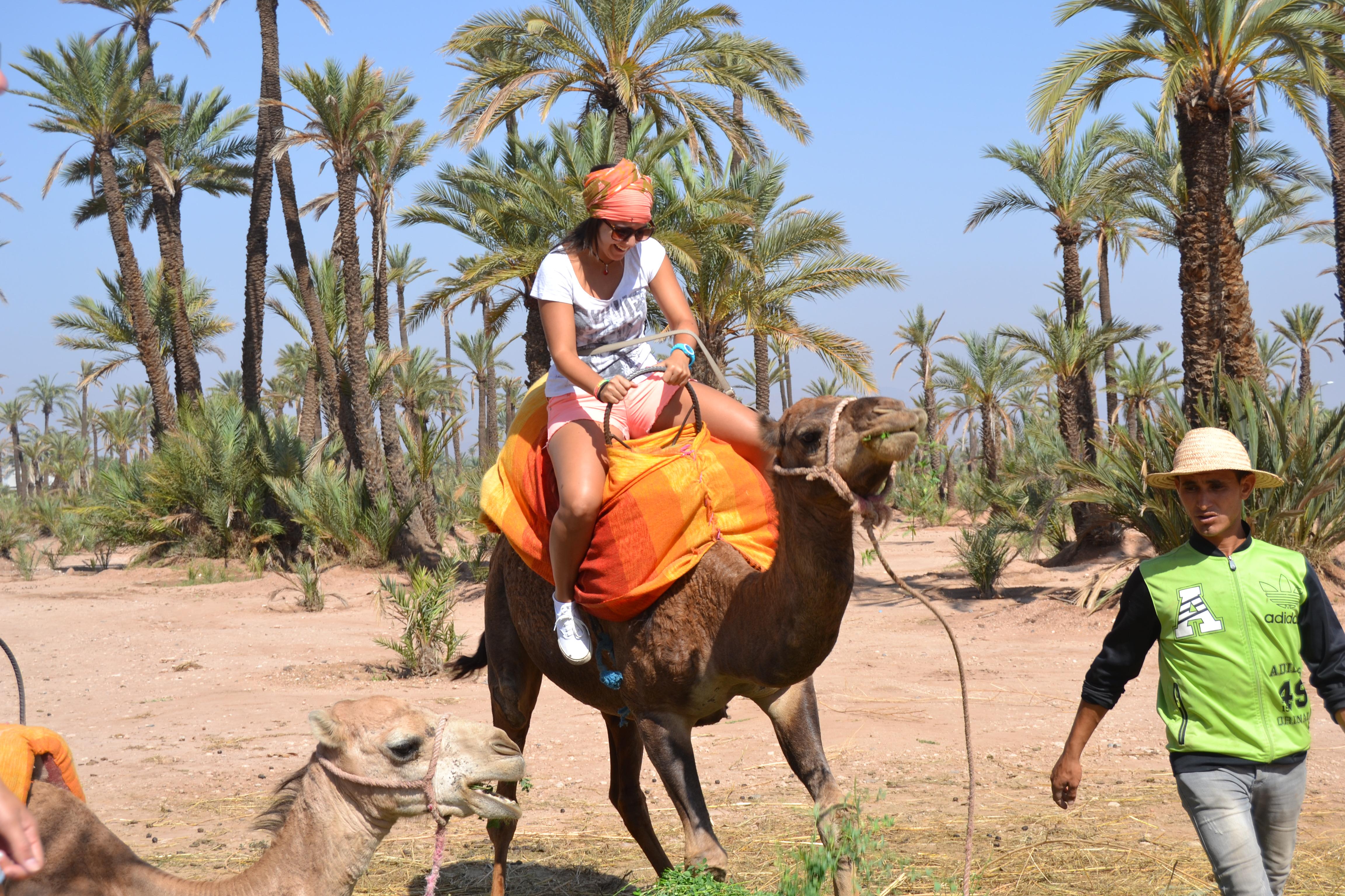 Subir a camello